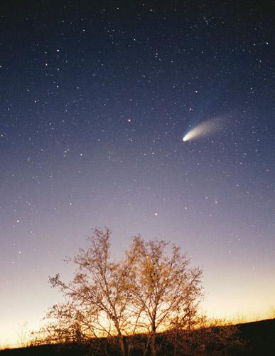 ヘールボップ彗星
